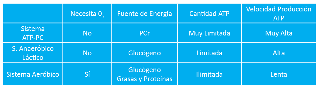 Sistemas Energéticos Fast Fitness